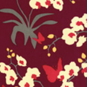 Orchid_mul2